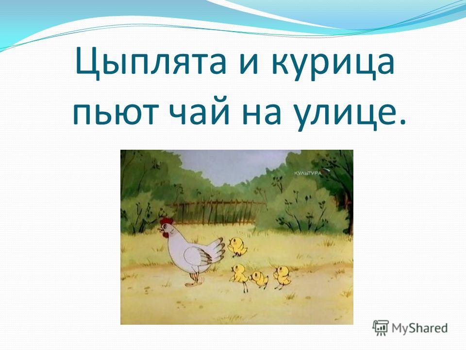 Цыплята и курица пьют чай на улице.