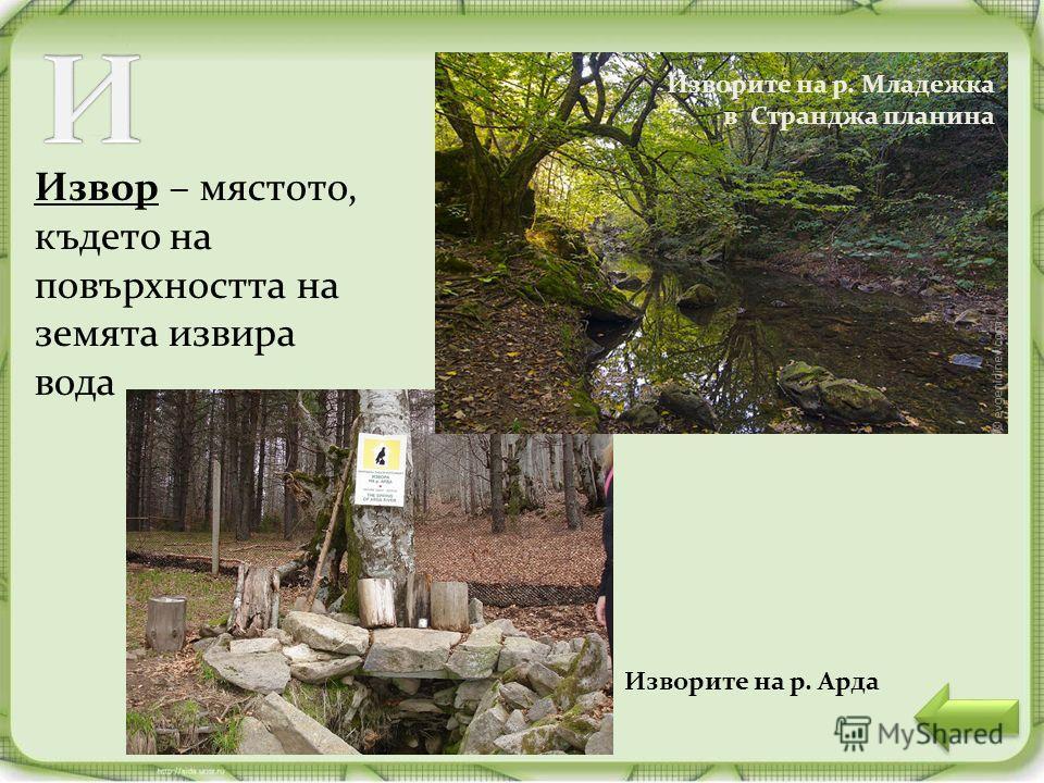 Извор – мястото, където на повърхността на земята извира вода Изворите на р. Младежка в Странджа планина Изворите на р. Арда