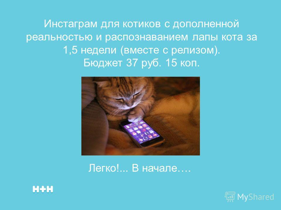 Инстаграм для котиков с дополненной реальностью и распознаванием лапы кота за 1,5 недели (вместе с релизом). Бюджет 37 руб. 15 коп. Легко!... В начале….