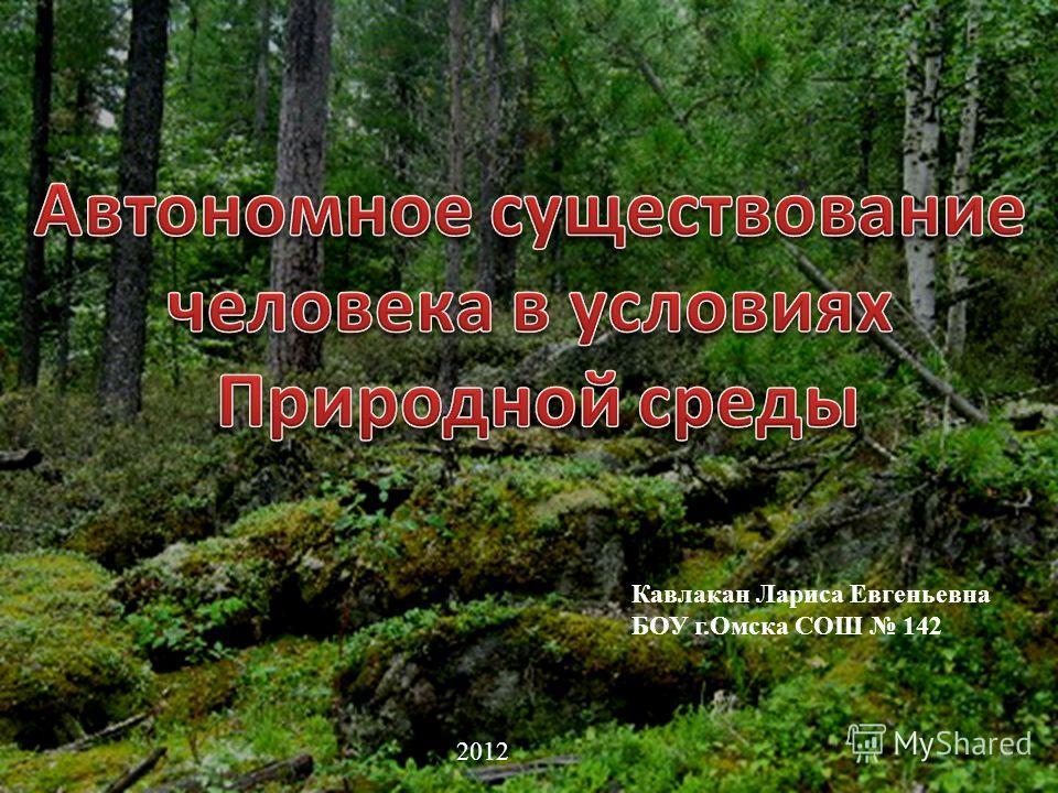 Кавлакан Лариса Евгеньевна БОУ г.Омска СОШ 142 2012