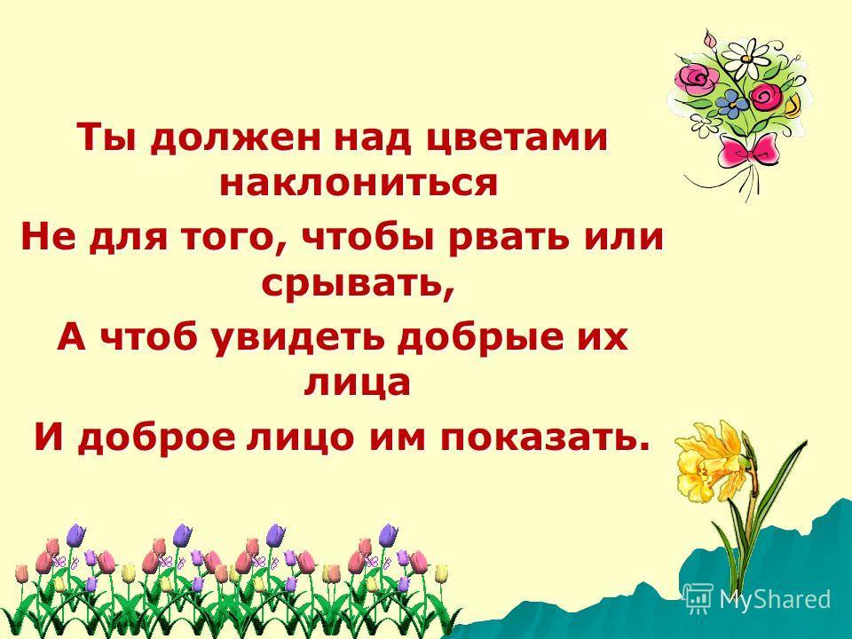 Ты должен над цветами наклониться Не для того, чтобы рвать или срывать, А чтоб увидеть добрые их лица И доброе лицо им показать.