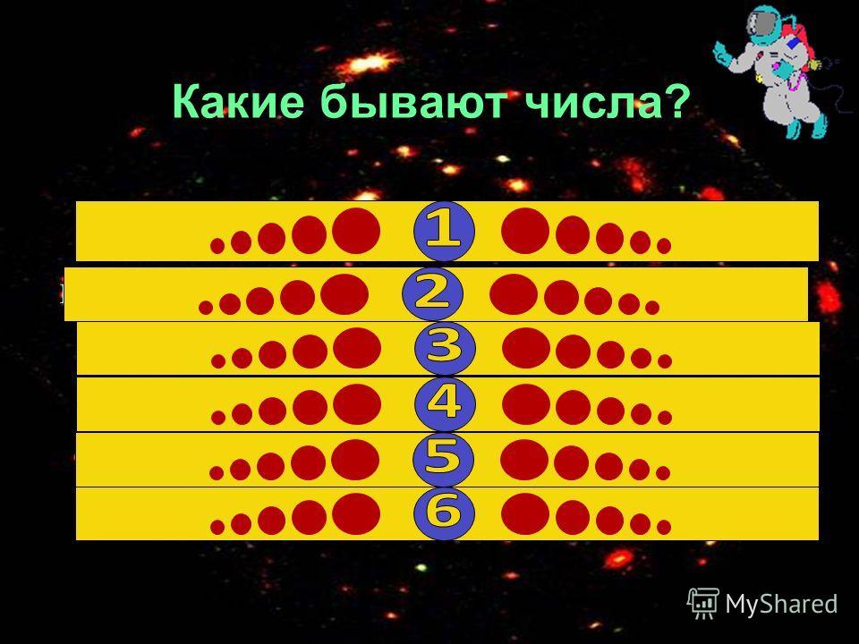 Какие бывают числа? четные и нечетные 20 четные и нечетные 20 Положительные и отрицательные 14 дробные 7 дробные 7 большие и маленькие6 большие и маленькие6 целые 5 целые 5 натуральные 1 натуральные 1
