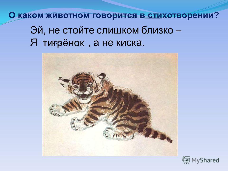 О каком животном говорится в стихотворении? Эй, не стойте слишком близко – Я, а не киска. тигрёнок …
