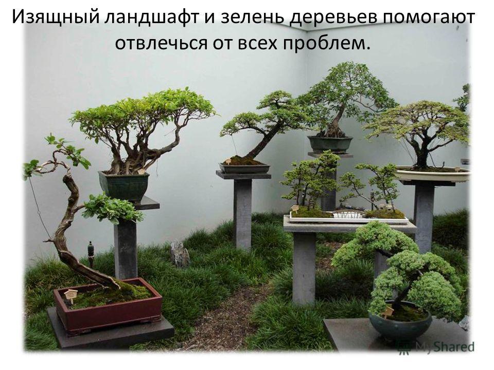 Изящный ландшафт и зелень деревьев помогают отвлечься от всех проблем.