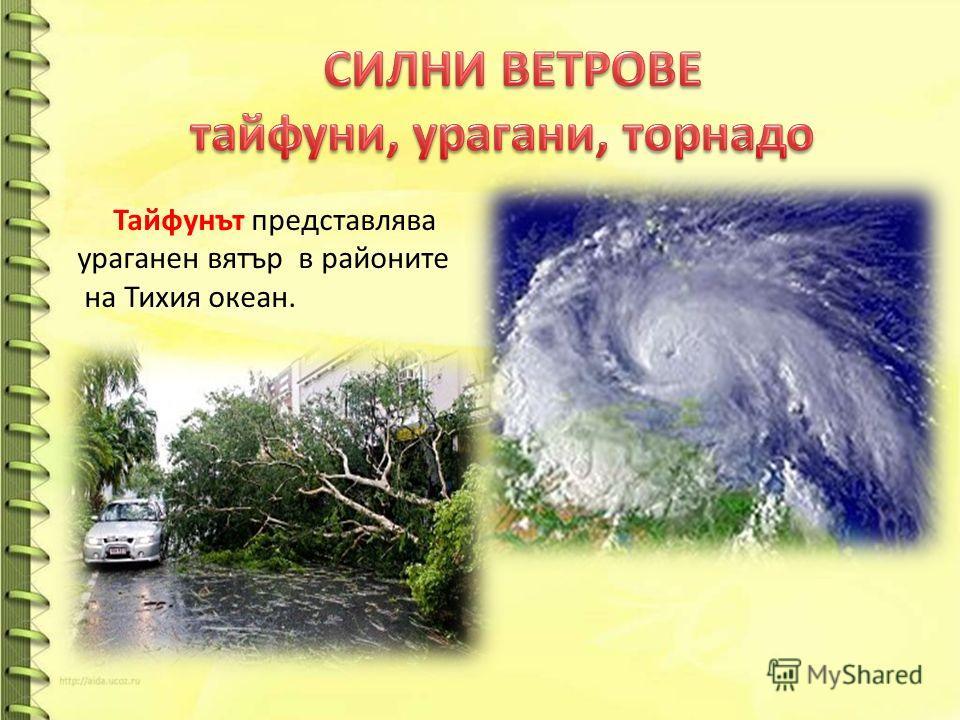 Тайфунът представлява ураганен вятър в районите на Тихия океан.