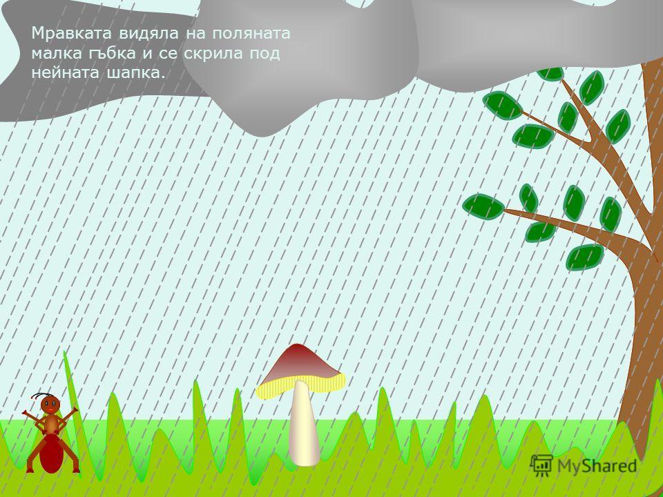Мравката видяла на поляната малка гъбка и се скрила под нейната шапка.