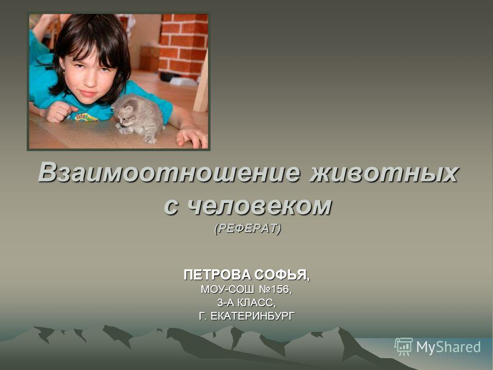 -общение животных- реферат: