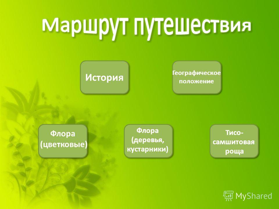 История Географическое положение Флора (цветковые) Флора (деревья, кустарники) Тисо- самшитовая роща