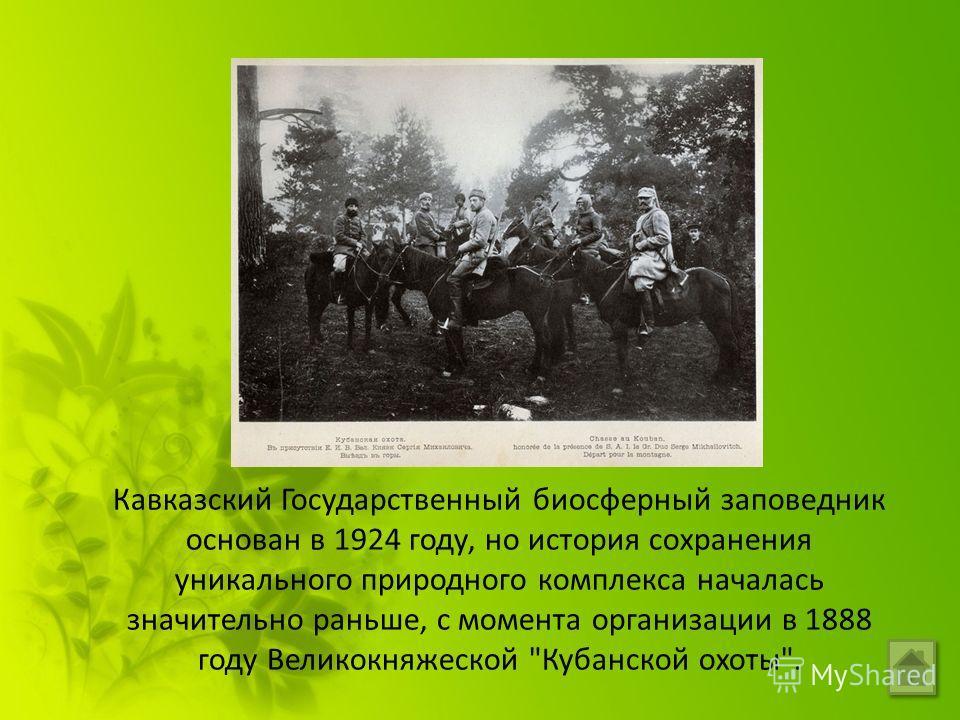 Презентацию по теме кавказский биосферный заповедник