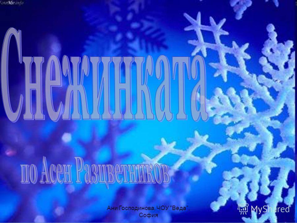 Ани Господинова, ЧОУ Веда, София