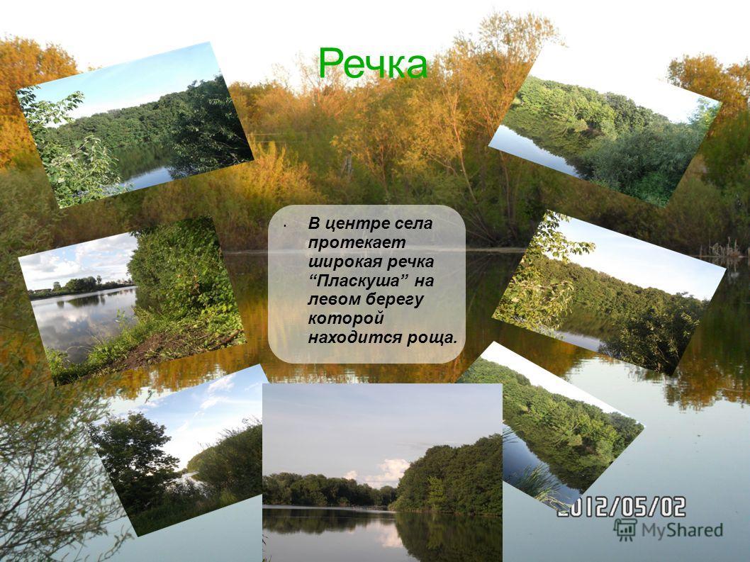 В центре села протекает широкая речка Пласкуша на левом берегу которой находится роща. Речка
