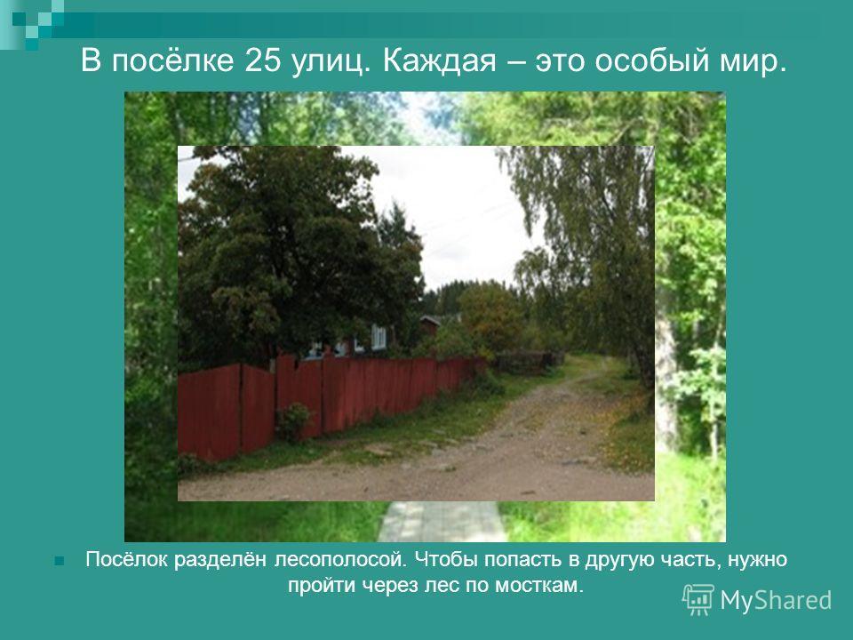 В посёлке 25 улиц. Каждая – это особый мир. Посёлок разделён лесополосой. Чтобы попасть в другую часть, нужно пройти через лес по мосткам.