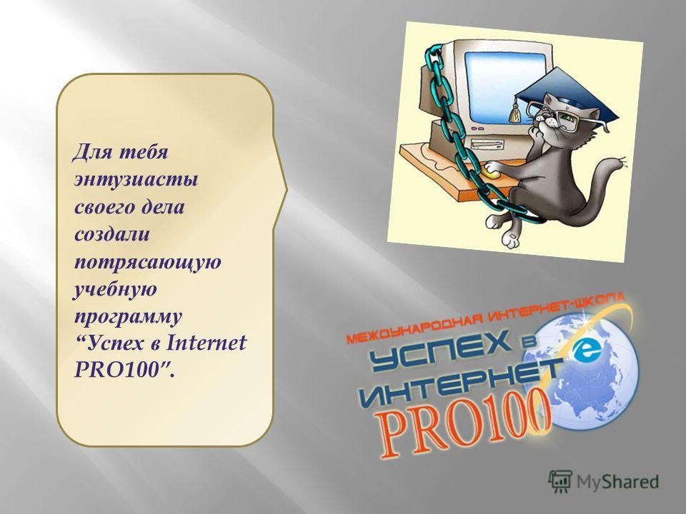 Для тебя энтузиасты своего дела создали потрясающую учебную программу Успех в Internet PRO100.