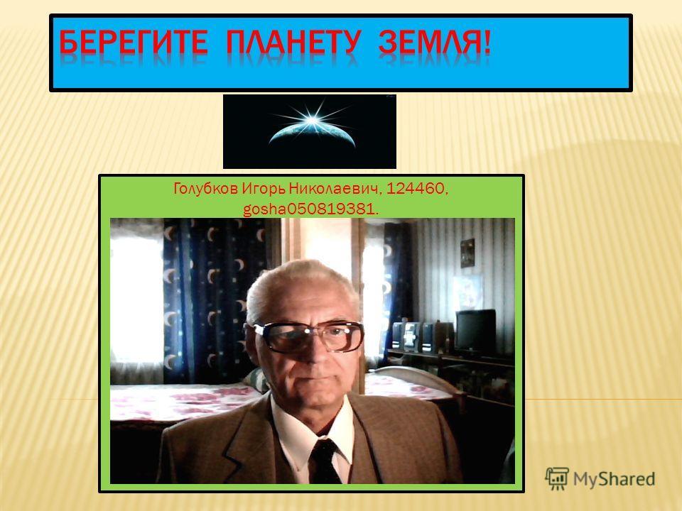Голубков Игорь Николаевич, 124460, gosha050819381.