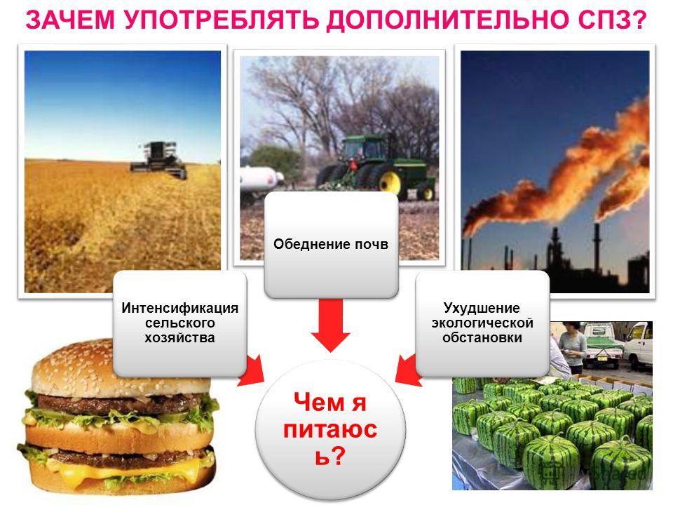 Чем я питаюс ь? Интенсификация сельского хозяйства Обеднение почв Ухудшение экологической обстановки ЗАЧЕМ УПОТРЕБЛЯТЬ ДОПОЛНИТЕЛЬНО СПЗ?
