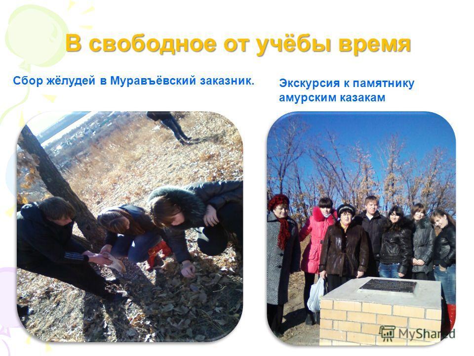 В свободное от учёбы время Экскурсия к памятнику амурским казакам Сбор жёлудей в Муравъёвский заказник.