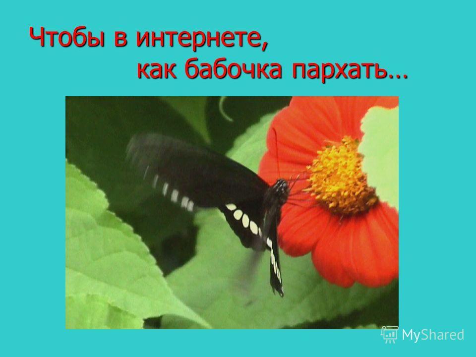 Чтобы в интернете, как бабочка пархать…