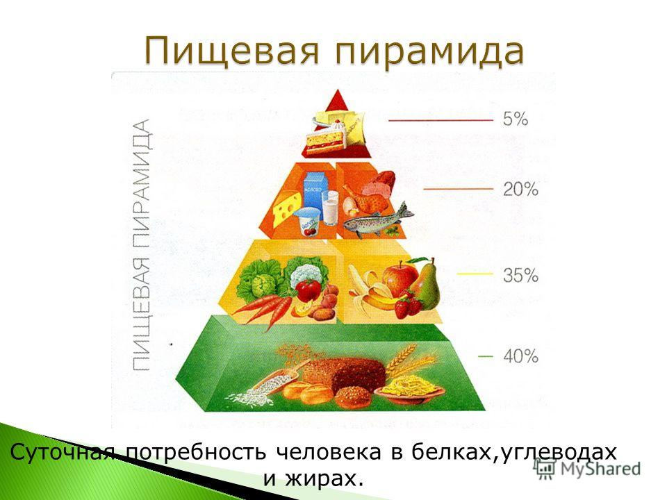 Что такое пищевая пирамида. Что такое пищевой костер. 5 самых вредных продуктов. Информация о самых популярных блюдах фаст-фуда Проведем эксперимент с кока- колой