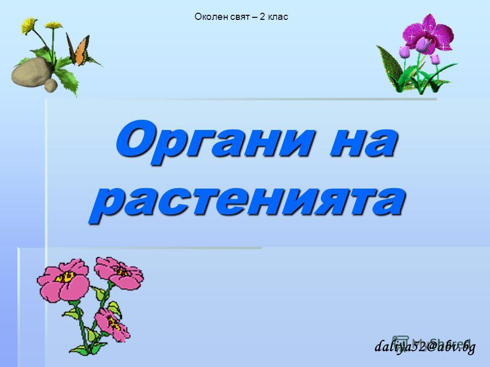 Органи на растенията Органи на растенията Околен свят – 2 клас daliya52@abv.bg