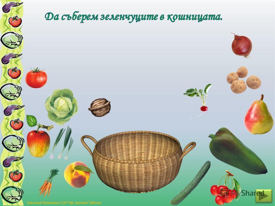 Емилия Петкова СОУХр. БотевАйтос