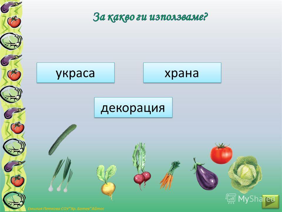 дървета храсти тревисти Емилия Петкова СОУХр. БотевАйтос