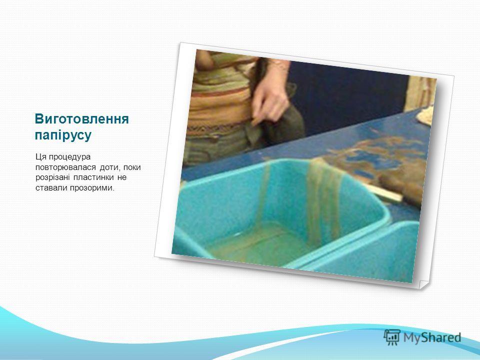 Виготовлення папірусу Ця процедура повторювалася доти, поки розрізані пластинки не ставали прозорими.
