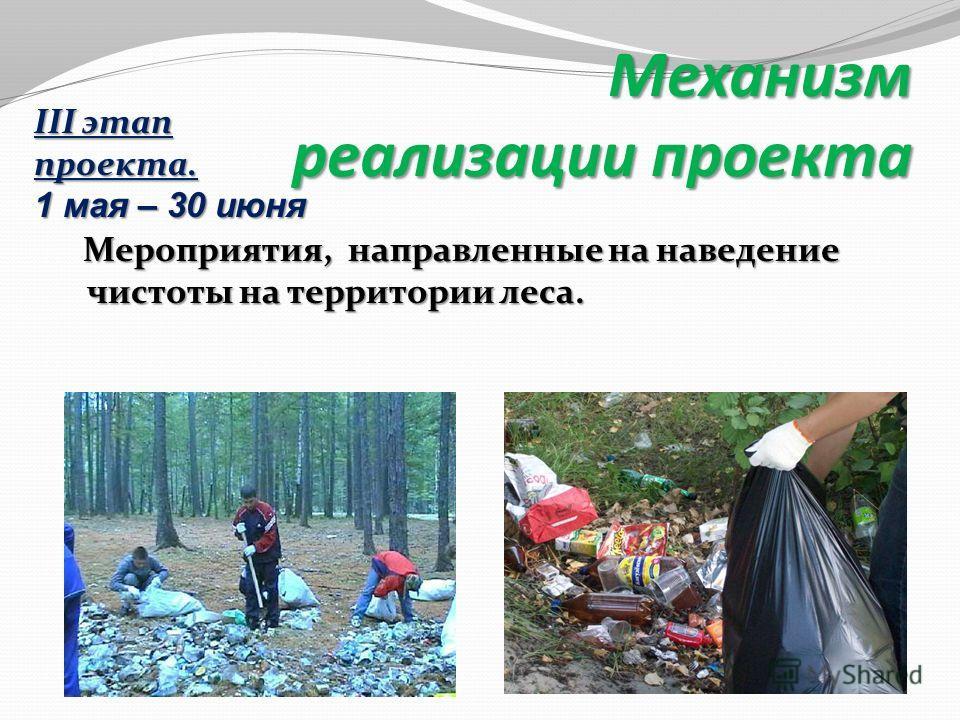 Мероприятия, направленные на наведение чистоты на территории леса. Мероприятия, направленные на наведение чистоты на территории леса. Механизм реализации проекта III этап проекта. 1 мая – 30 июня