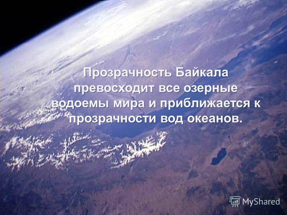 Байкальская вода вкусна и чиста, потому что озеро обладает мощными защитными механизмами самоочищения