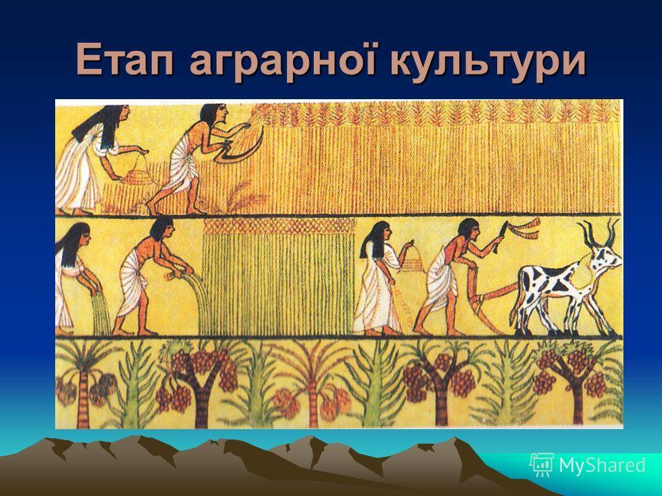 Етап аграрної культури