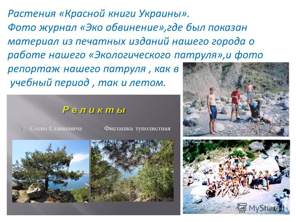конгрессы и олимпиады Ежегодно проводились экологические конгрессы, например, «Город,в котором мы живём»,домашнее задание «Исторические страницы Балаклавы».