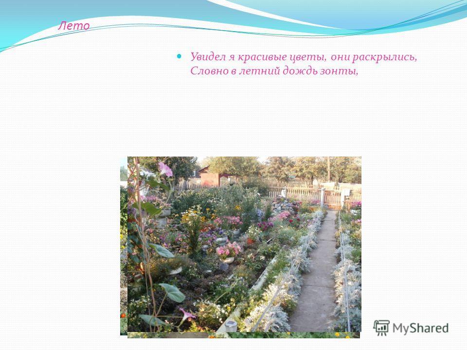 в моем саду Виктор Медведев viktor0819551 viktor081955@mail.ru