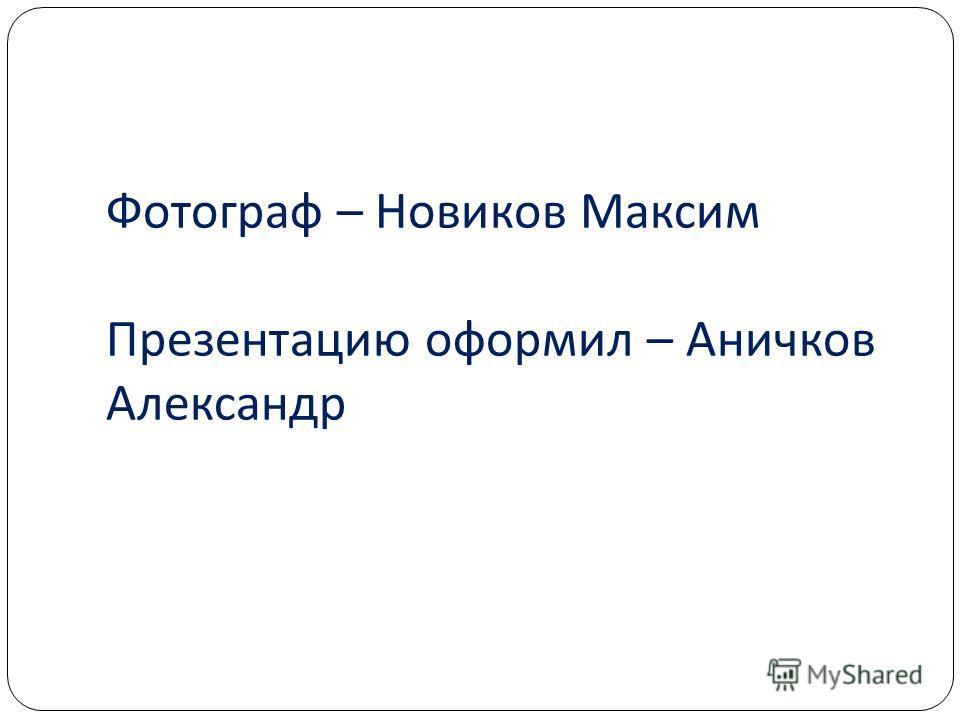 Фотограф – Новиков Максим Презентацию оформил – Аничков Александр