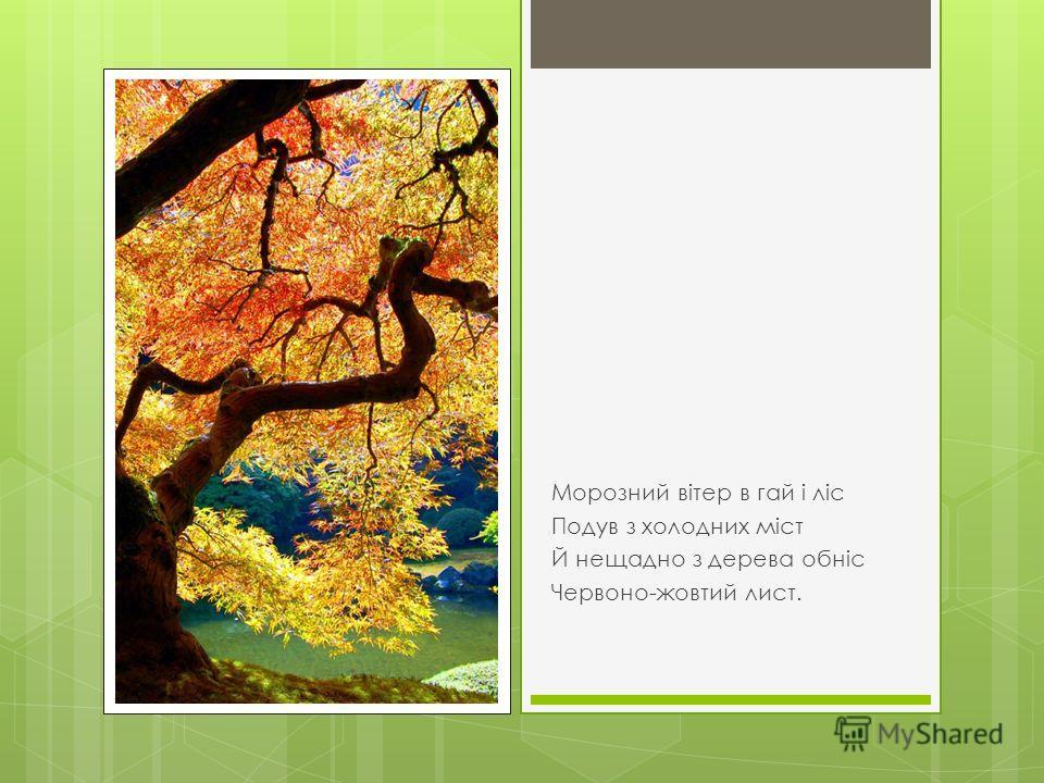 Я.Щоголів. «Листопад» Звелося літо, і не знать, Як день за днем минув, І серпень дав, що можна дать, І вересень майнув…