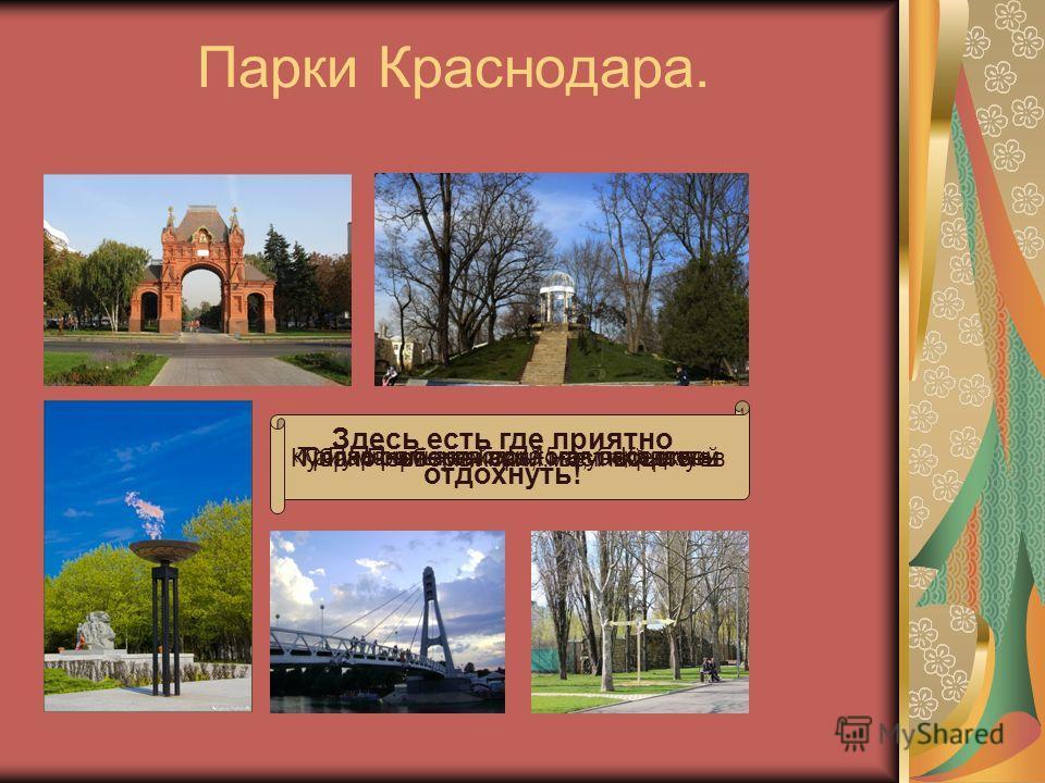 ВУЗы Краснодара. КубГУ КубГТУ КубГМУ