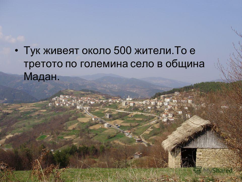 В близост до селото тече река Арда.