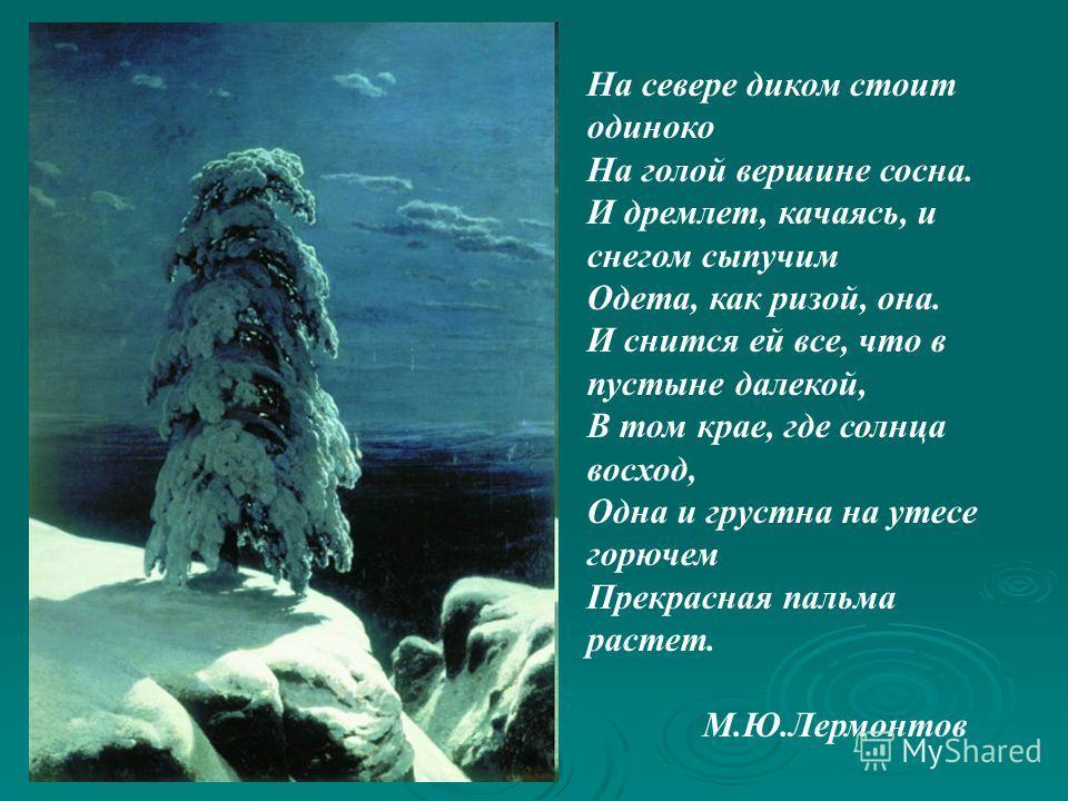 На севере диком стоит одиноко На голой вершине сосна. И дремлет, качаясь, и снегом сыпучим Одета, как ризой, она. И снится ей все, что в пустыне далекой, В том крае, где солнца восход, Одна и грустна на утесе горючем Прекрасная пальма растет. М.Ю.Лер