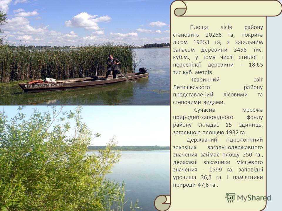 Площа лісів району становить 20266 га, покрита лісом 19353 га, з загальним запасом деревини 3456 тис. куб.м., у тому числі стиглої і переспілої деревини - 18,65 тис.куб. метрів. Тваринний світ Летичівського району представлений лісовими та степовими