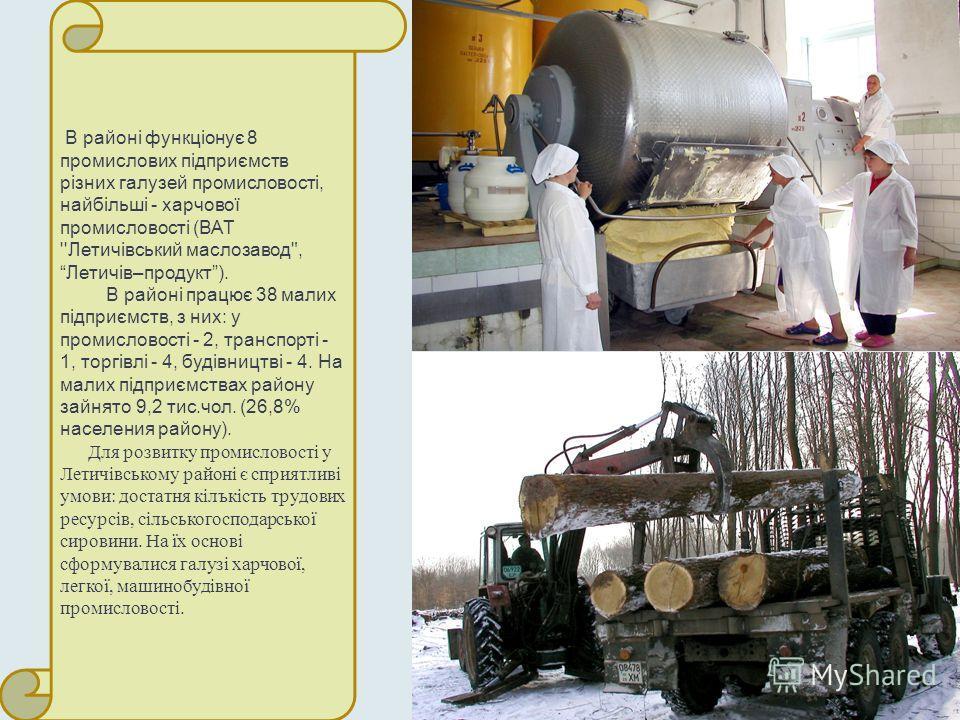 В районі функціонує 8 промислових підприємств різних галузей промисловості, найбільші - харчової промисловості (ВАТ ''Летичівський маслозавод