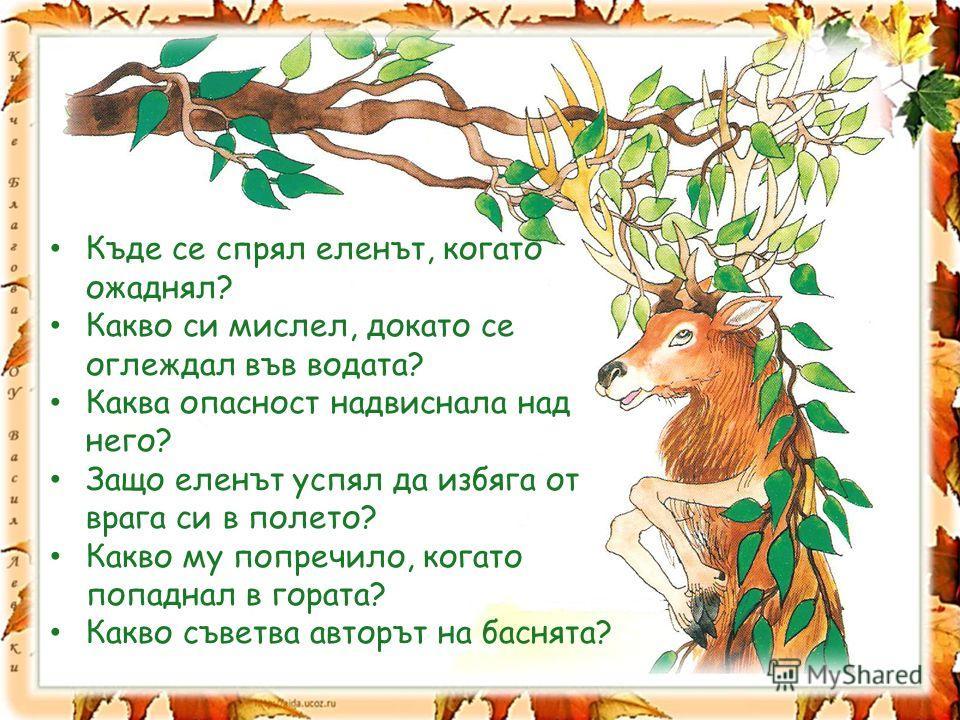 Къде се спрял еленът, когато ожаднял? Какво си мислел, докато се оглеждал във водата? Каква опасност надвиснала над него? Защо еленът успял да избяга от врага си в полето? Какво му попречило, когато попаднал в гората? Какво съветва авторът на баснята