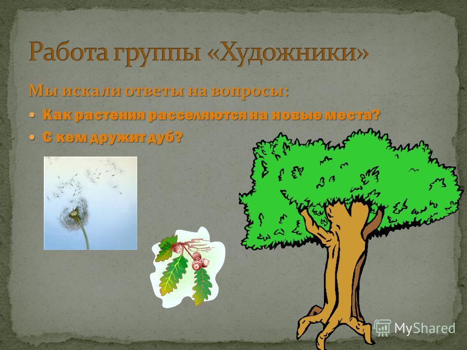 Мы искали ответы на вопросы: Как растения расселяются на новые места? Как растения расселяются на новые места? С кем дружит дуб? С кем дружит дуб?