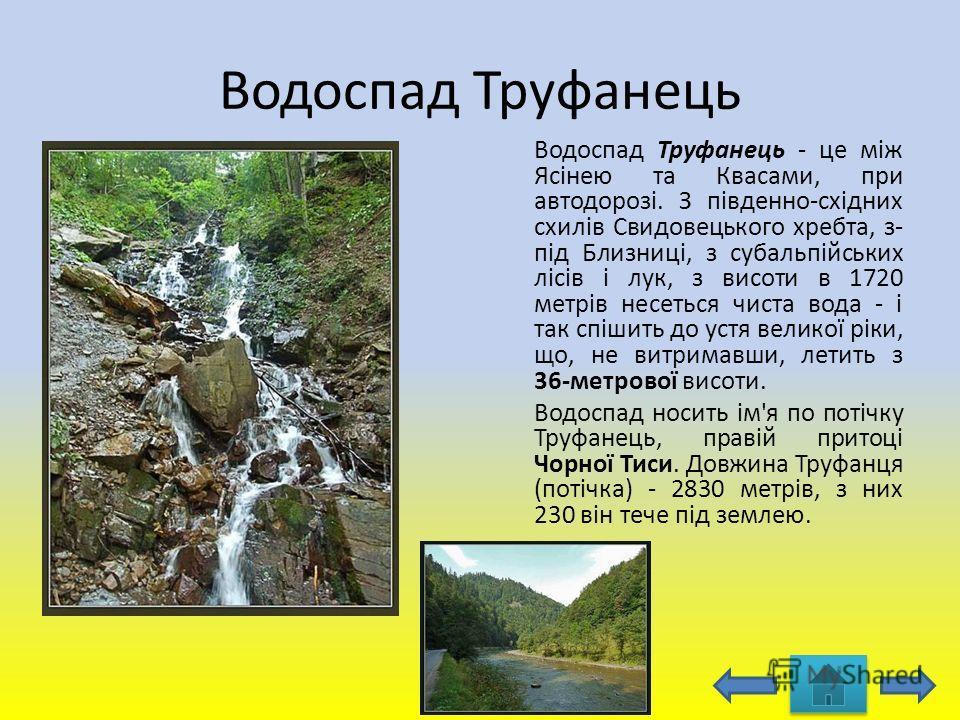 Водоспад Труфанець Водоспад Труфанець - це між Ясінею та Квасами, при автодорозі. З південно-східних схилів Свидовецького хребта, з- під Близниці, з субальпійських лісів і лук, з висоти в 1720 метрів несеться чиста вода - і так спішить до устя велико