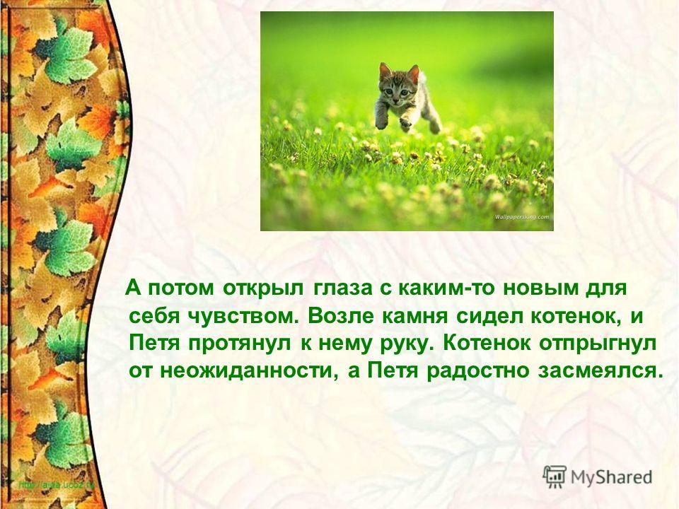 А потом открыл глаза с каким-то новым для себя чувством. Возле камня сидел котенок, и Петя протянул к нему руку. Котенок отпрыгнул от неожиданности, а Петя радостно засмеялся.