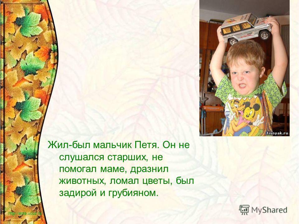 Жил-был мальчик Петя. Он не слушался старших, не помогал маме, дразнил животных, ломал цветы, был задирой и грубияном.