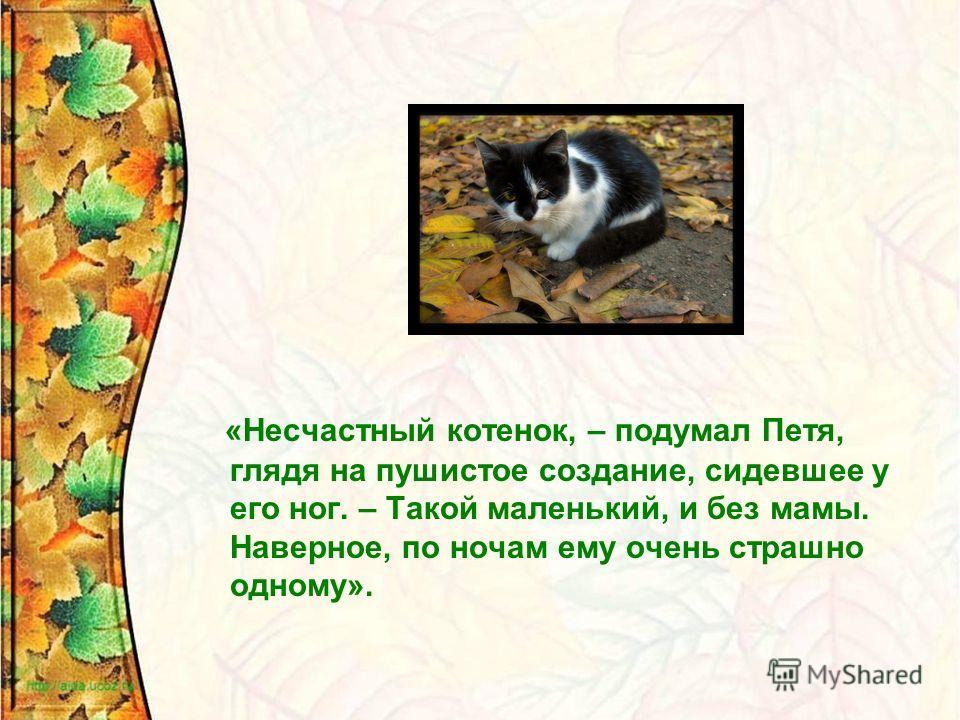 «Несчастный котенок, – подумал Петя, глядя на пушистое создание, сидевшее у его ног. – Такой маленький, и без мамы. Наверное, по ночам ему очень страшно одному».