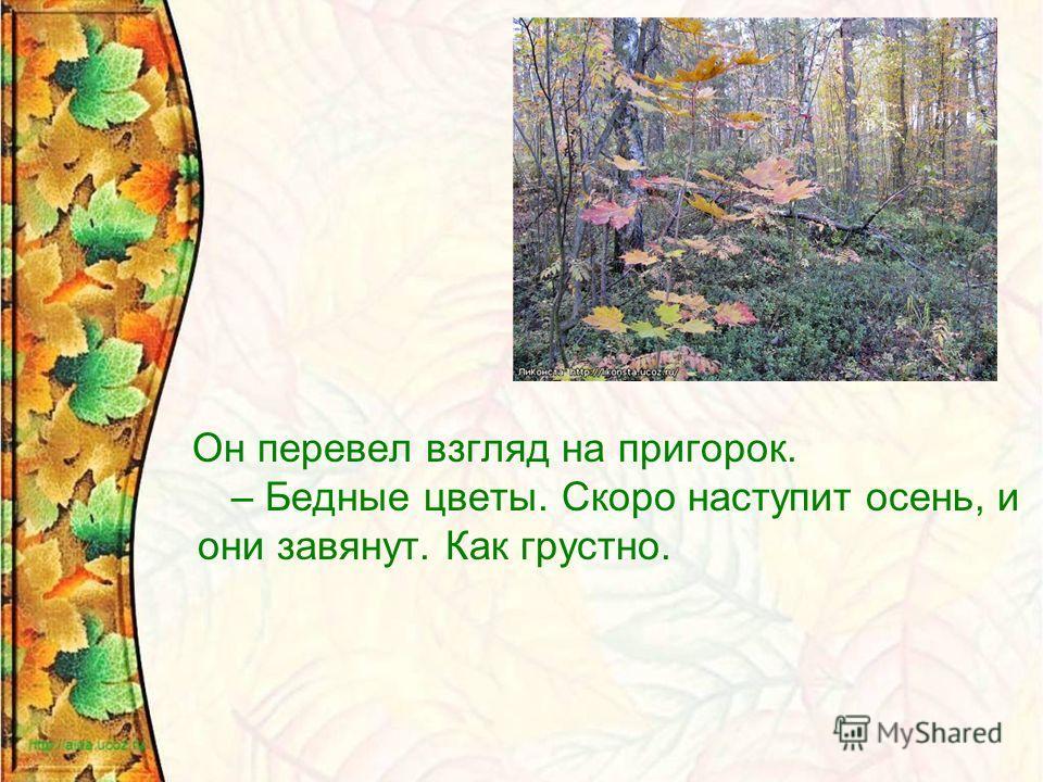 Он перевел взгляд на пригорок. – Бедные цветы. Скоро наступит осень, и они завянут. Как грустно.