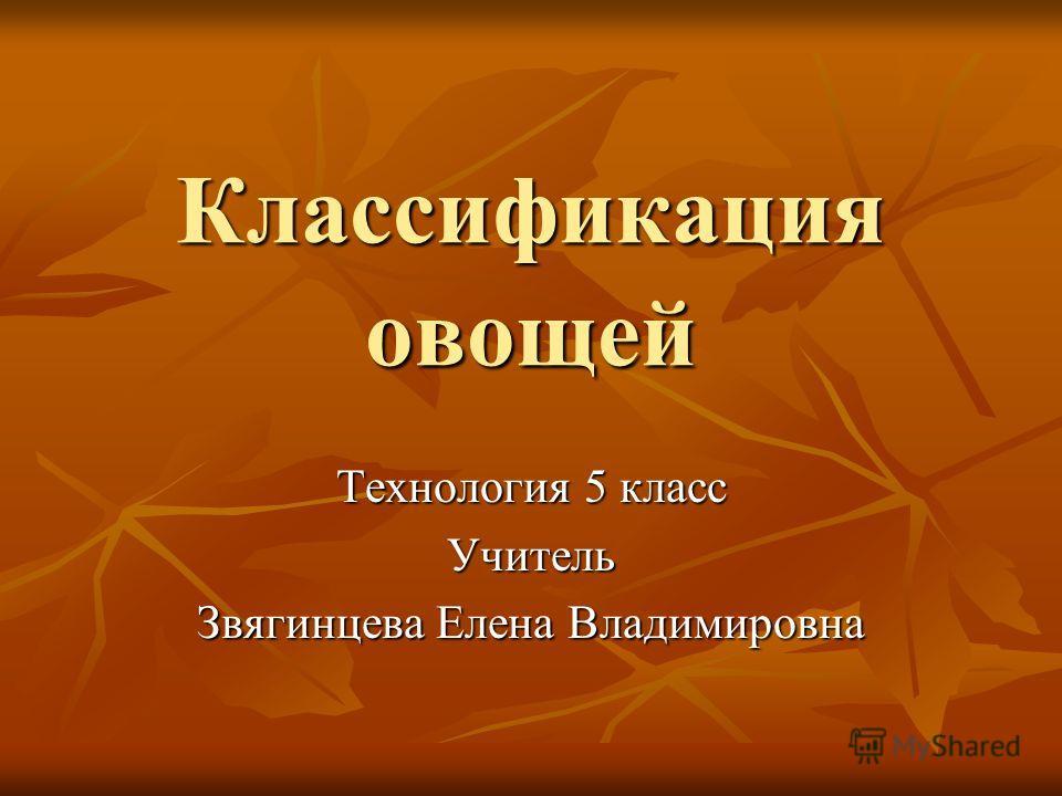 Классификация овощей Технология 5 класс Учитель Звягинцева Елена Владимировна