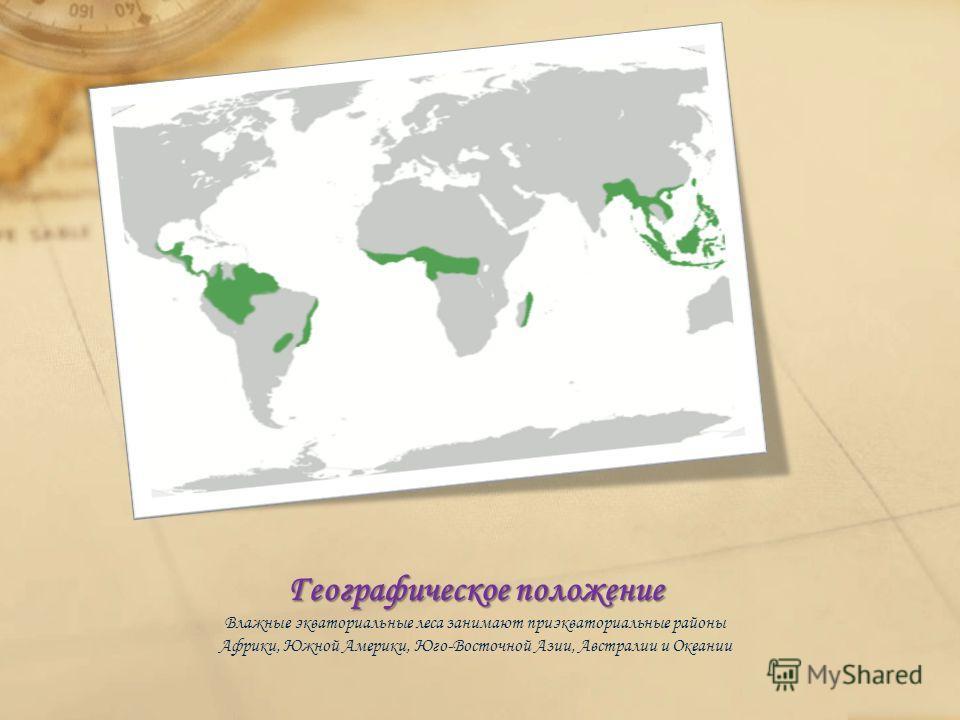 Географическое положение Влажные экваториальные леса занимают приэкваториальные районы Африки, Южной Америки, Юго-Восточной Азии, Австралии и Океании