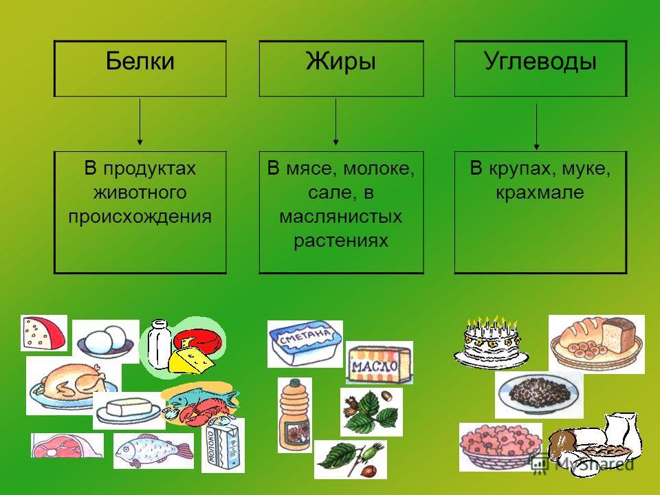 БелкиЖирыУглеводы В продуктах животного происхождения В мясе, молоке, сале, в маслянистых растениях В крупах, муке, крахмале