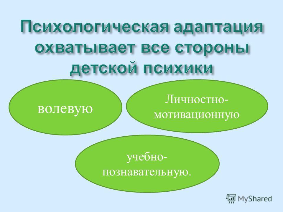 волевую Личностно- мотивационную учебно- познавательную.