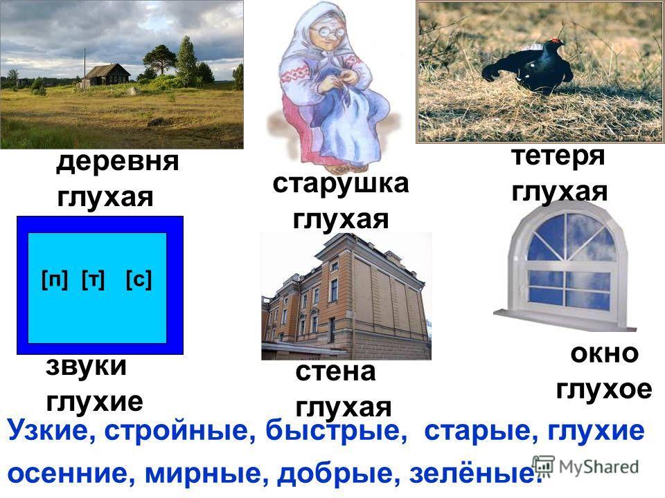 [п] [т] [с] деревня глухая старушка глухая тетеря глухая звуки глухие стена глухая окно глухое Узкие, стройные, быстрые, старые, глухие осенние, мирные, добрые, зелёные.